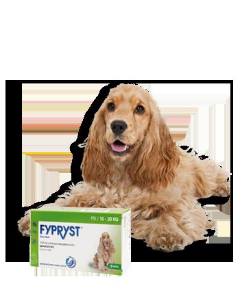 FYPRYST DOGS SPOT-ON pro psy 1x1,34ml 10-20kg