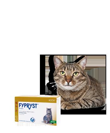 Fypryst cat spot-on pro kočky