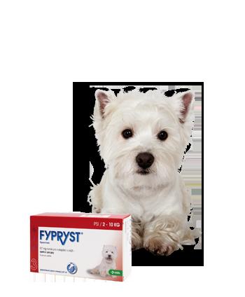 FYPRYST DOGS SPOT-ON pro psy 1x0,67ml 2-10kg